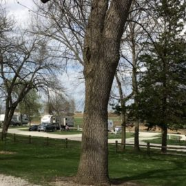 City Park Campground