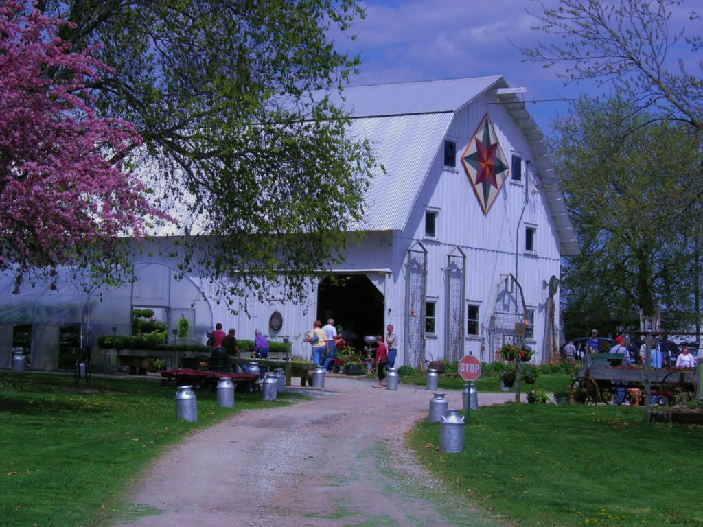 Howell's Dried Florals & Greenhouse